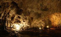 De regulă, stalagmitele se dezvoltă pe verticală, de jos în sus. În cazul de față,