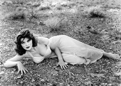 Tina Louise/Ginger Grant from Gilligan's Island Hollywood Stars, Classic Hollywood, Old Hollywood, Hollywood Actresses, Tina Louise, Ginger Gilligans Island, Ginger Grant, The Donna Reed Show, Vestidos