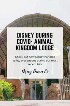 Check out Disney World handled our most recent stay while at Animal Kingdom Lodge! Check out the safety precautions they took while we stayed at this Disney World resort. | Disney World resort tips. Disney World tips and tricks | Disney World during covid | DIsney World planning guide | #disney #disneyworld #disneyworldtips #disneyworldresort #animalkingdomlodge Disney World Vacation Planning, Disney World Trip, Disney Land, Disney Parks, Disney World Tips And Tricks, Disney Tips, Disney World Resorts, Disney Vacations, Disney Animal Kingdom Lodge