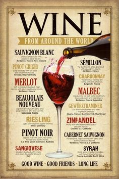 Wine From Around The World Tin Sign Good Wine Friends Good Life Merlot Syrah Guide Vin, Wine Guide, Wine Tasting Party, Wine Parties, Bar A Vin, Wine Education, Tips & Tricks, Vintage Wine, Vintage Metal