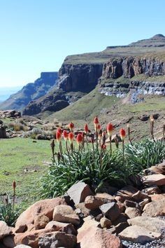 Sani Top Village Lesotho: The country in Africa you probably haven't heard of via The World on my Necklace Beautiful World, Hello Beautiful, Back Road, Cool Art Drawings, Eastern Europe, Countries Of The World, Far Away, Landscape Photography, South Africa