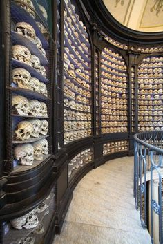 The Mütter Museum in Philadelphia...there are far more macabre curios than the skulls to be found here