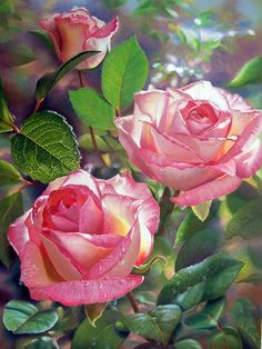 25 Beautiful Flower Painting from top artists around the w Art Floral, Deco Floral, Photo Rose, Rose Foto, Wonderful Flowers, Beautiful Roses, My Flower, Flower Art, Rosa Rose