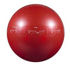 GoFit 65cm Professional Stability Ball by GoFit, http://www.amazon.com/dp/B000K7EPLS/ref=cm_sw_r_pi_dp_MisTrb1D7KGEH