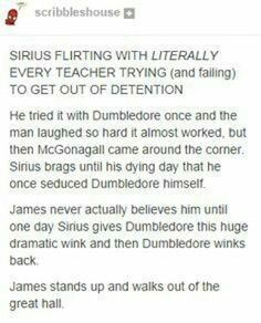 I just can't! sirius black has seduced albus percival wulfric brian dumbledore!sirius black - the marauders Lily Potter, Harry Potter Love, Harry Potter Universal, Harry Potter Fandom, Harry Potter Memes, Potter Facts, James Potter, Drarry, No Muggles