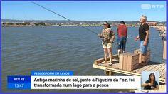 O Palhetas na Foz: Lavos: Antiga marinha de sal é agora um pescódromo...