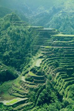 Banaue Rice Terraces - Philippines #filipijnen #philippines #island #reisjunk #travel #world #explore www.reisjunk.nl