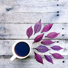 Artsy, Photography, Tea, Leaves, Fall photography, Tumblr fall photography