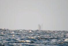 + - Uma filmagem feita nas margens do Lago Superior, nos EUA, está intrigando os internautas. As imagens mostram o que parece ser um objeto fantasmagórico por sobre a água. Jason Asselin e amigos estavam vendo um arco-iris no sábado (07/10), quando enxergaram algo estranho no horizonte. A visão se assemelha à um possível 'navio …