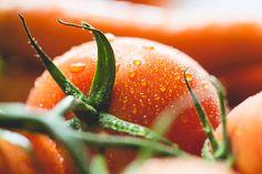 Free Image: Wet Tomato Close Up | Download more on picjumbo.com!