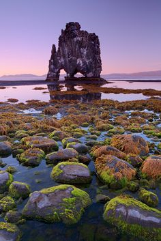 Hvítserkur rock formation in Northern Iceland. Hvítserkur is a 15 m-high sea stack just off shore on the eastern side of Vatnsnes. The sea erosion has carved holes through its foundations and sculptured it in the unique shape it is today. Some say it is in the shape of a petrified monster.