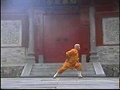 31st generation Shaolin Temple disciple Neil Genge demonstrates basic level Ba Duan Jing (8 Section Brocade) 31st generation Shaolin Temple disciple Neil Gen...