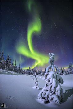 "Aurora ""flame"" at the Pyhae Luosto Nationalpark, Finland"