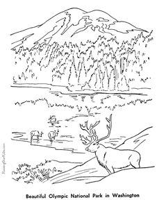 Historic Places - Olympic National Park coloring page
