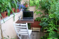 Very impressive garden, with lots of green leafy vegetables and ideas for small spaces