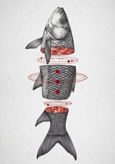 Collect your choice of gallery quality Giclée, or fine art prints custom trimmed by hand in a variety of sizes with a white border for framing. Gravure Illustration, Illustration Art, Illustrations, Fish Drawings, Art Drawings, Drawing Sketches, Bd Design, Text Poster, Kawai Japan