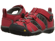 Copy of Keen: Kids Seacamp II CNX Infant/Toddler (Racing Red/Gargoyle) The new essential hybrid water sandal for active kids who like to splash around. This low-profile KEEN.CNX allows little feet increased flexibility and freedom. With a grippy rubber sole that won't mark up the floor and KEEN's Secure Fit Lace Capture System, they will be ready for anything.