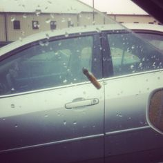 drivers who throw their cigarettes out the window