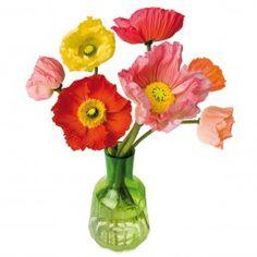 Raamdecoratie Flat Flowers raamstickers met bloemen