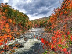 Wilson Creek, N., roars on Oct. Sherri Parkhurst, Your Take Beautiful Scenery, Beautiful Places, National Weather, You Take, Fall Photos, Places To Visit, Country Roads, World, Water