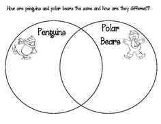 like the idea of the Venn Diagram comparing animals in Arctic and Antarctic, and between animals