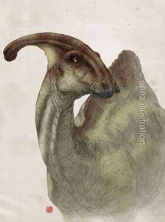 Parasaurolophus walkeri by onez82.deviantart.com on @deviantART