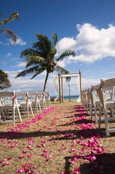 The paper cones hanging by ribbons on the chairs are filled with more flower petals for guests to shower the bride and groom on their way out.