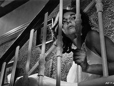 "Anne Bancroft in ""The Pumpkin Eater"" (1964) LOVE!"