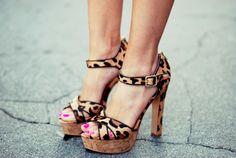 Leopard Shoes - Steve Madden