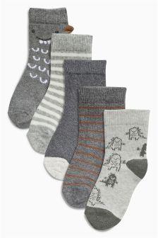 Five Pack Dinosaur Socks (0-18mths)