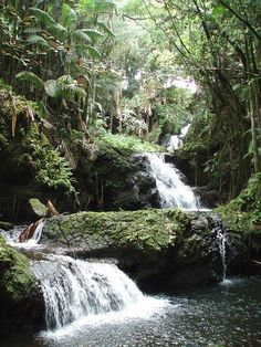 A shady and beautiful waterfall in the   Hawaii Tropical Botanical Garden, outside Hilo on the Big Island of   Hawaii