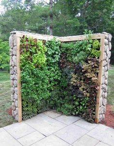Outdoor herb wall