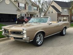 Muscle Cars, GSD,s. Protect the wolves, horses. While it is true in which Muscle mass Austin Martin, Jaguar, 67 Pontiac Gto, Convertible, Mustang Cobra, Wolf, Chevelle Ss, Us Cars, American Muscle Cars