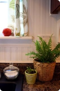 cute kitchen window with green plant
