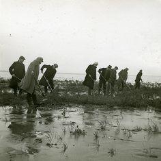 3733 | Noordoostpolder. Onkruidbestrijding in de polder. 194… | Flickr