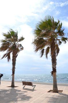 Palma de Mallorca , Spain