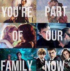 Hunger games, the host, the mortal instruments, divergent, Percy Jackson, Harry potter.