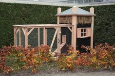 Gazebo, Outdoor Structures, Chicken, Deck Gazebo, Cabana, Arbors, Cubs