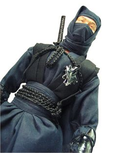 Ninja Warrior - my ideal occupation