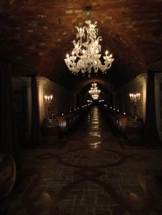 Wine Caves at Del Dotto winery in Napa Valley.  SO cool!