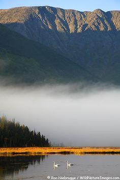 Kenai Peninsula, Chugach National Forest, Alaska