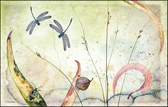 Watercolour © Ona Henderson ... these grasses are called nobby club rushes.