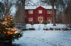 STÄMNINGSFULLT OCH TRADITIONELLT - HÄR VILL MAN FIRA JUL: Här börjar julen redan vid första advent. Då ställs pyntet fram i röda stugan på Selaön i Mälaren. Det får sedan vara kvar till tjugondag Knut – allt för att kunna njuta så länge som möjligt. Julen när det är som mysigast, traditionellt, varmt och mysigt | Johanna Flyckt Gashi / foto Lina Östling - Sköna Hem