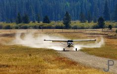 Maule landing on gravel strip at Sulphur Creek, ID. Located in Frank Church River of No Return Wilderness area, pilots from all around the country fly into this strip for breakfast. Sulphur Creek is accessible only by air, horseback or hiking. Maule Aircraft, C130 Hercules, Bush Pilot, Small Airplanes, Bush Plane, Airplane Flying, Air Planes, Nose Art, Aerial Photography