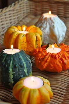 Menu Cute DIY Thanksgiving decorations using mini pumpkins, gourds, and simple tea light candles.Cute DIY Thanksgiving decorations using mini pumpkins, gourds, and simple tea light candles. Thanksgiving Table, Thanksgiving Decorations, Autumn Decorations, Fall Table, Table Decorations, Table 19, Halloween Decorations, Fall Harvest, Autumn Inspiration