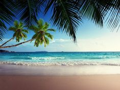 Image for Tropical Beach Paradise Wallpaper Paradise Wallpaper, Tropical Wallpaper, Beach Wallpaper, Hd Wallpaper, Windows Wallpaper, Nature Wallpaper, Strand Wallpaper, Seychelles Beach, Beach Wall Murals