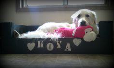 DIY Doggie Crate!