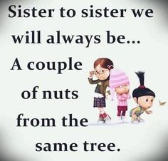 Funny Sister Quotes and Sayings Cute Sister Quotes, Missing Family Quotes, Sister Birthday Quotes Funny, Little Sister Quotes, Brother Sister Quotes, Birthday Wishes For Sister, Love My Sister, Quotes About Sisters, Sister Sayings