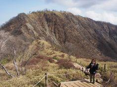 丹沢 丹沢山と蛭ヶ岳の稜線にて