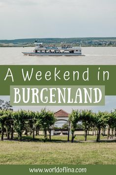 Burgenland in Austria is known for its countless vines. It's the region in Austria with the most wine and therefore a true paradise for wine lovers! #burgenland #austria #wine Types Of White Wine, Types Of Wine, Weekender, Countries Europe, Italy Spain, Old Town Square, Boat Tours, Europe Travel Tips, Great View